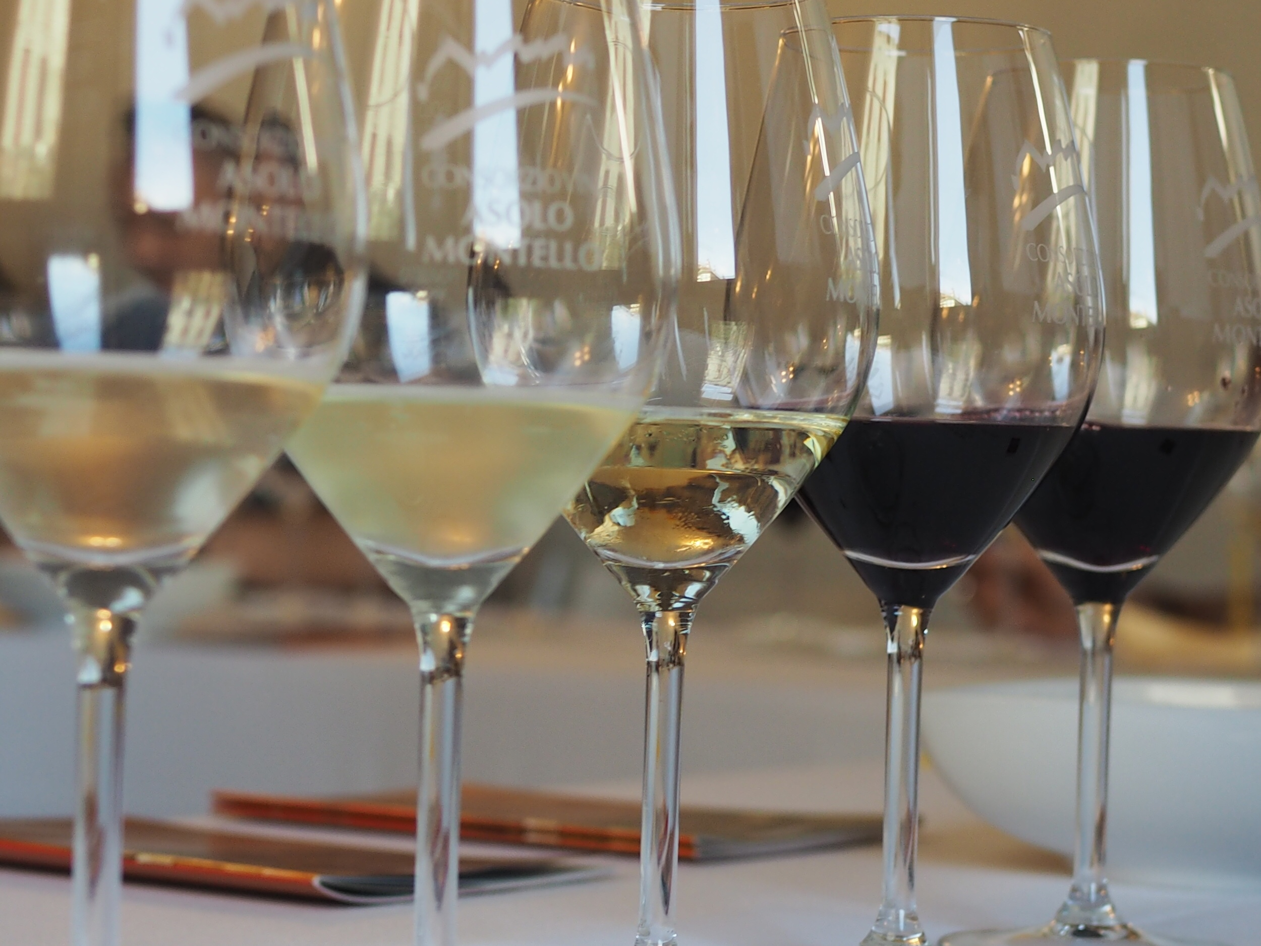 Consorzio vini asolo montello Treviso Vino Prosecco veneto magazine Treviso Vino magazine gaia rebecchi cosa fare in veneto cosa fare a Treviso